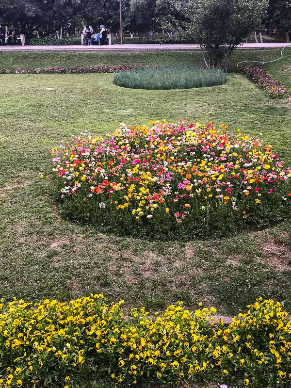 Blumen im Paradiesgarten, Eram Garden, Schiras