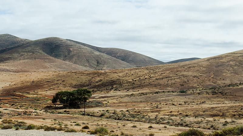 Reistetipps für Fuerteventura Anfänger. Mit dem Auto haben wir an drei Tagesausflügen die Insel erobert. Ausführliche Berichte und Fotos gibt es auf Purple Avocado.