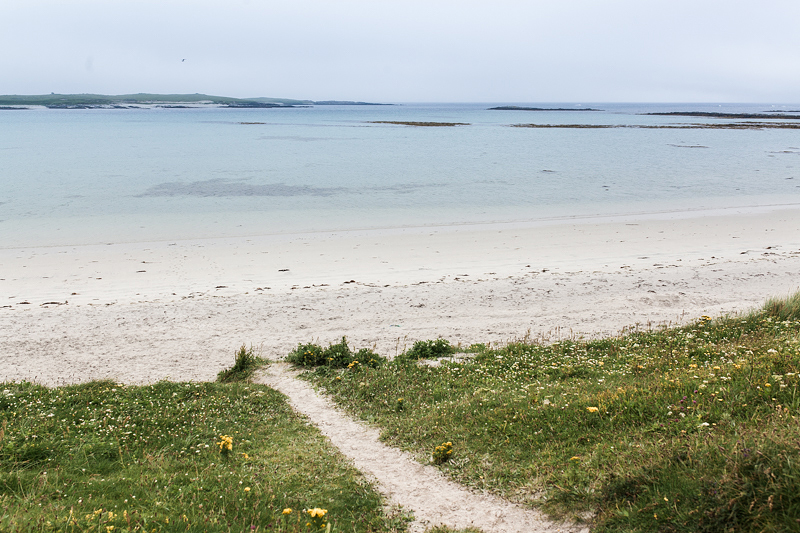 Great campsites in Scotland: North Uist: Balranald Camping on the Outer Hebrides